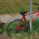Bike and Hydrant