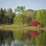 Lake Shore in May