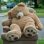 Recliner Bear