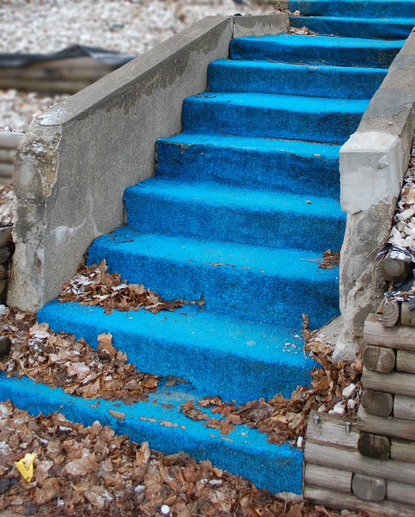 blue steps 1 just think of it